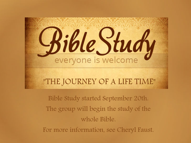 Adult Forum: Bible Study